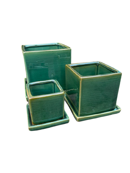 NS64TEG Small Cube and Saucer