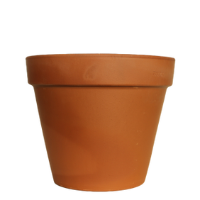 Italian Vasi