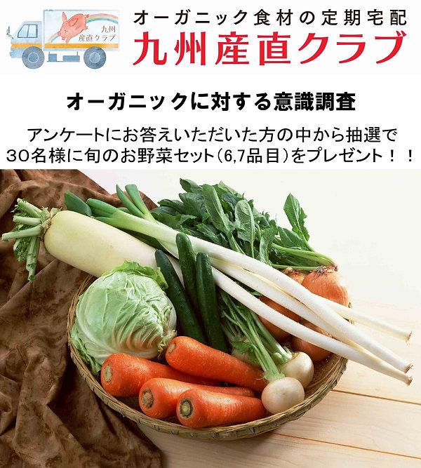 野菜セット2.jpg