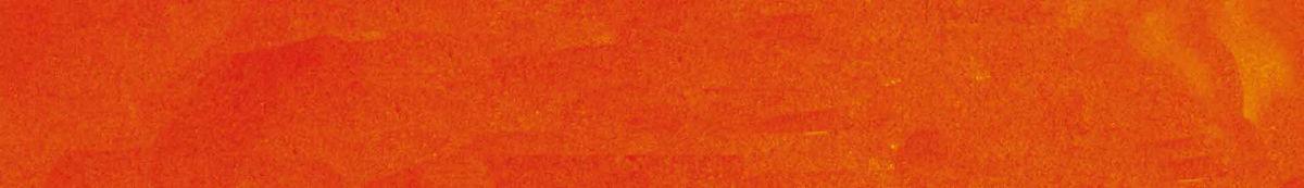 赤帯2015.jpg