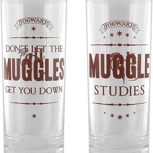 Harry Potter  Glasses Muggle Studies