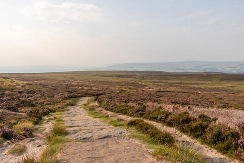 Ilkley Moor, West Yorkshire