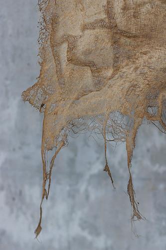 Detail of Marrow