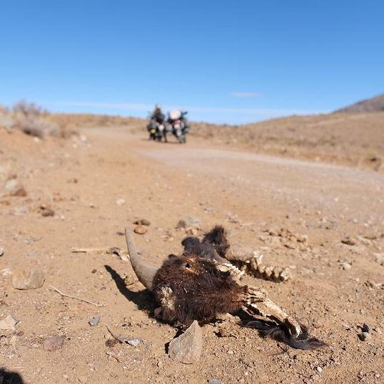 K_Coquimbo Chile_ desert.JPG