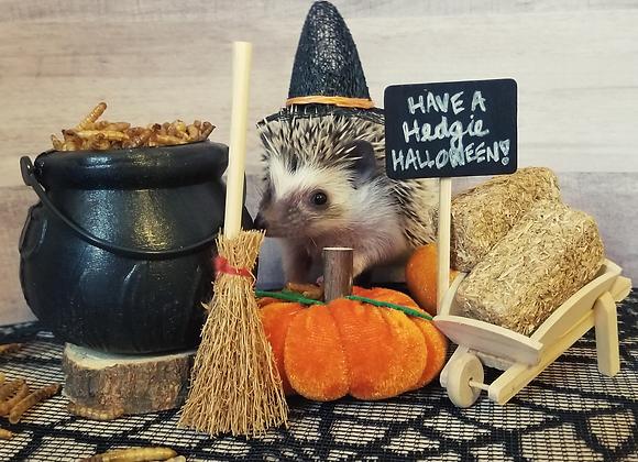 Halloween Hedgie Box