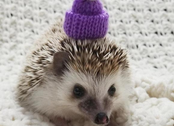 Tiny Knit Hat