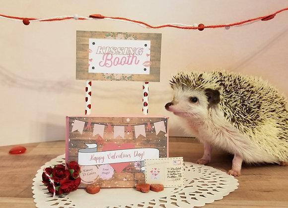 Valentines Hedgie Box