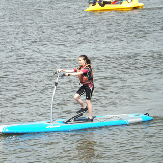 Paddle stepper