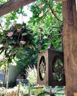 Pergolado, Flores e Lanternas
