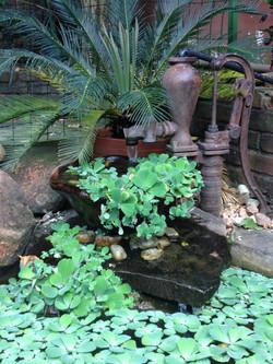 Jardim Cachoeira Bomba d´agua Antiga