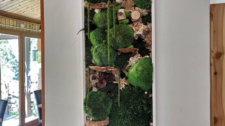 Cadre de végétaux préservés