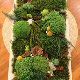 Cadre végétal 100x30cm