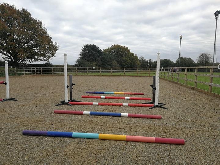 Horse rehab exercises