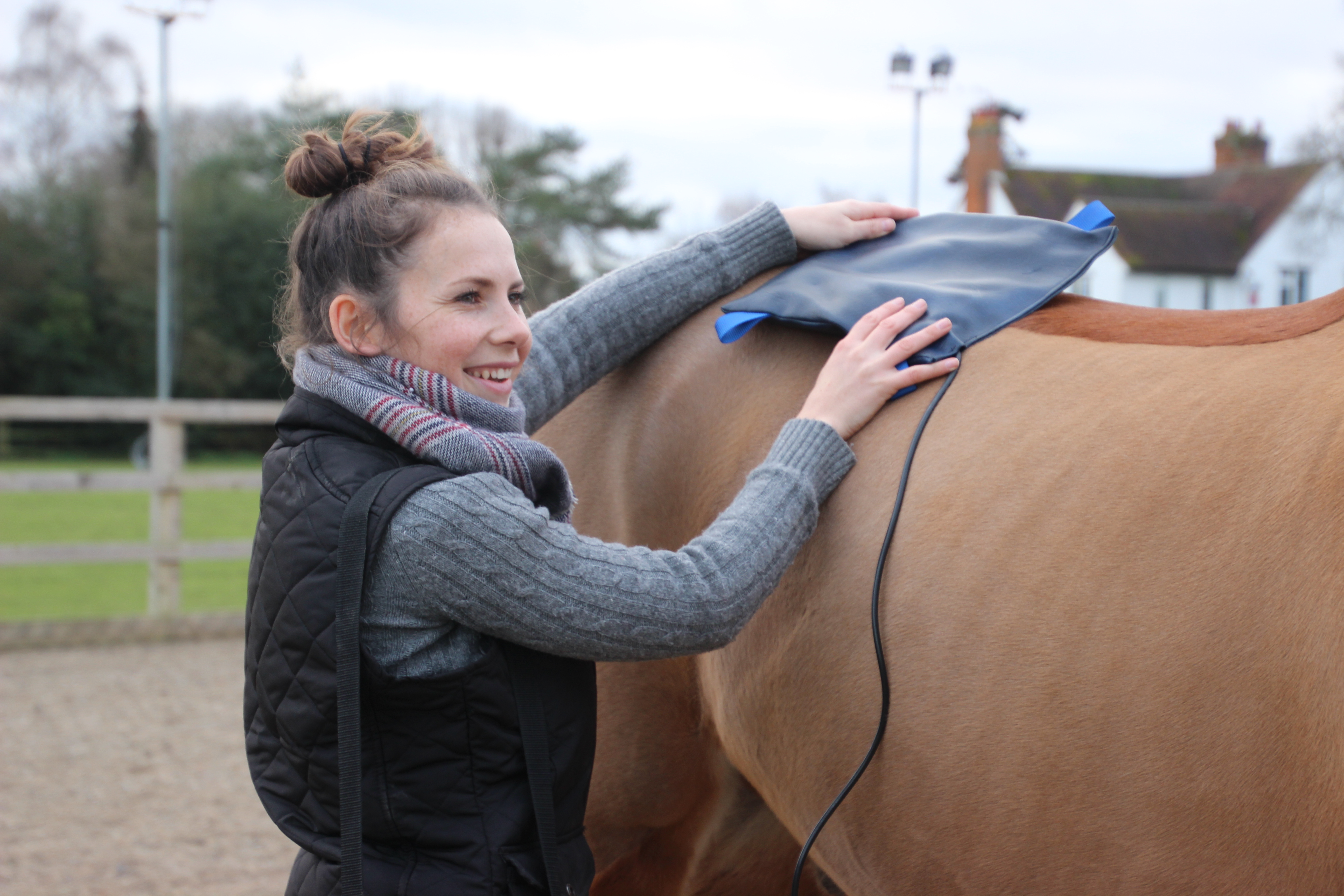 Equine electrotherapies