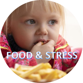 Food & stress for event page.png