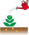 水で薄めた除草剤を・・・・直接雑草に散布すると・・・