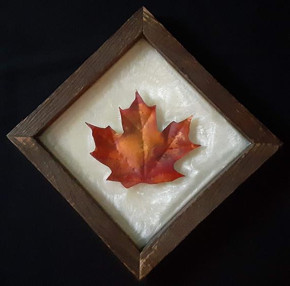 Sugar Maple Leaf - $55