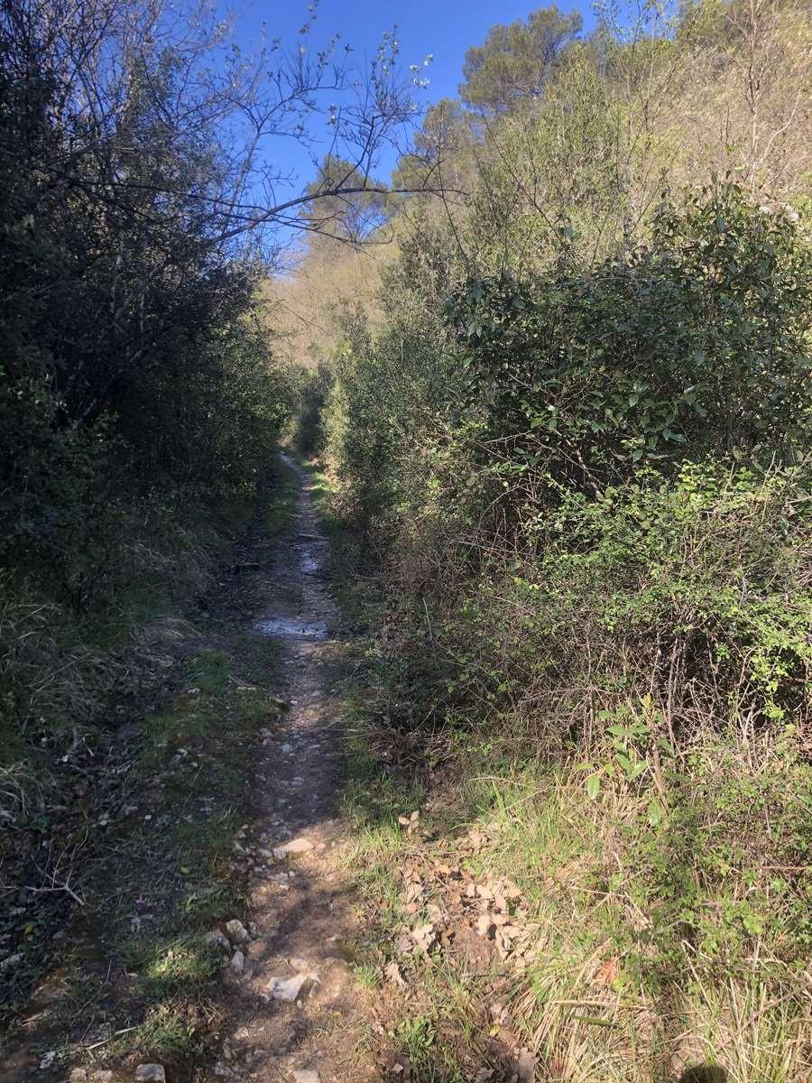Le sentier rocailleux de la randonnée sur La Barre de Cuers par les Veys, à seulmenet 10 mns de votre gite dans le Var-Relais du Gapeau