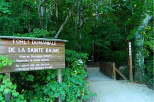 Le Parc Naturel Régional de la Sainte Baume