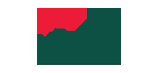 Flover - Alternate Logo transparent back