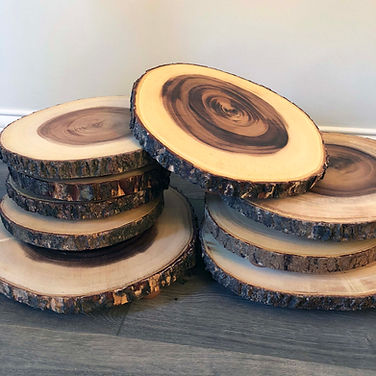 Wood Slices Various Sizes