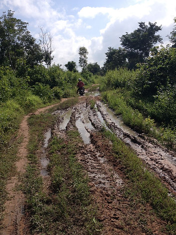 Dirt road from Koas Krala to Bech Khlok