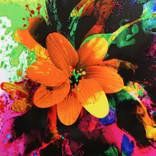 Japanese Floral Inspiration