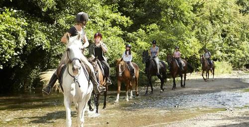 Jahanjev konjev po nedotaknjeni naravi