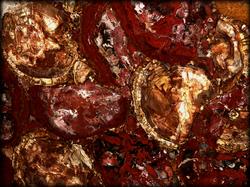 PetrifiedWood Red