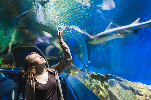 Young girl in aquarium tunnel with shark