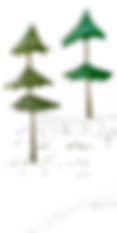 2 petits arbres.png