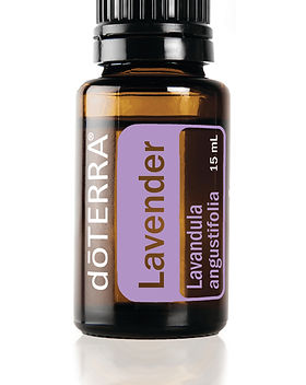 lavender-15ml[1].jpg