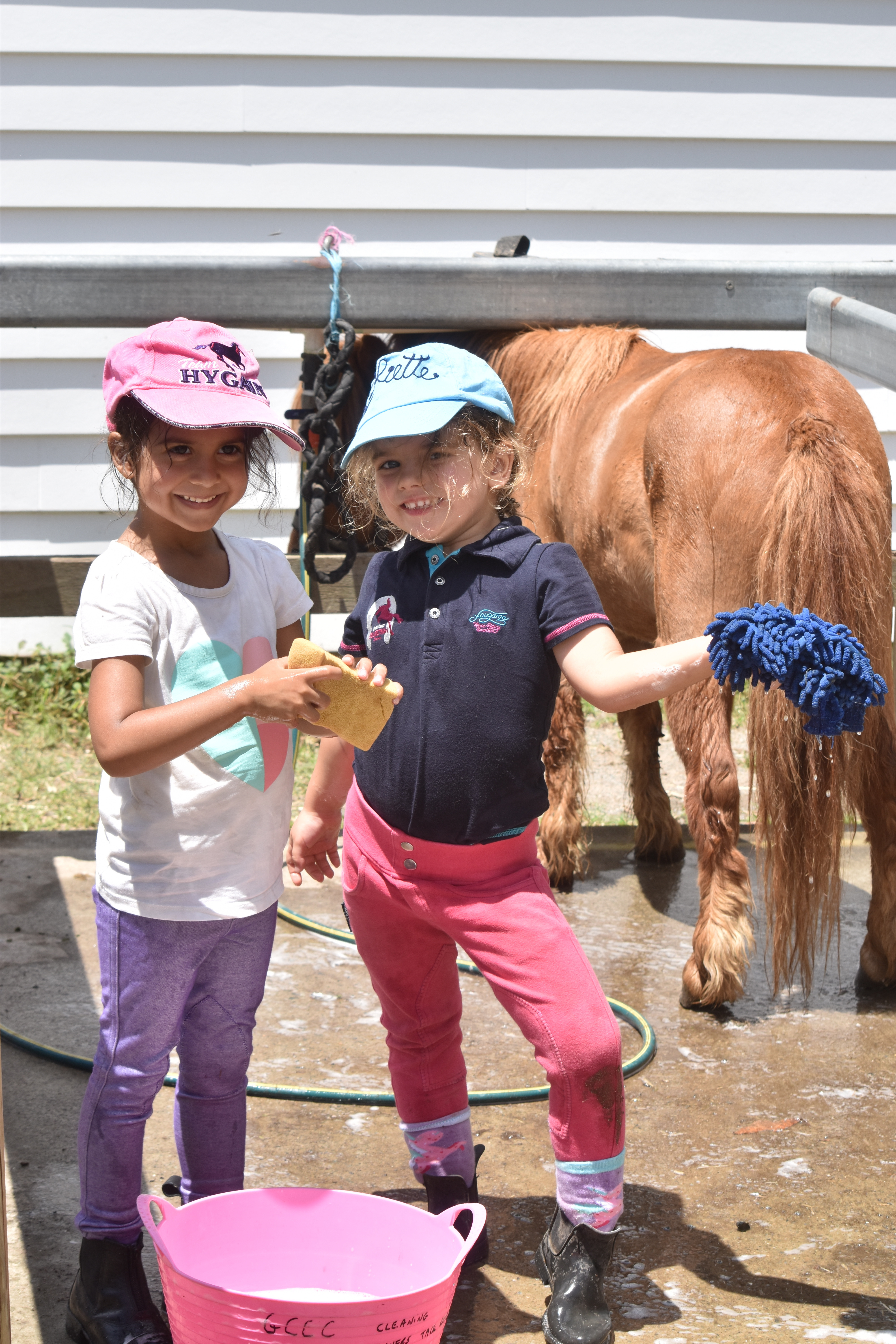 Young Rider 1 hour Program for the term