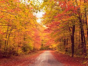 The Seasons That Change Us