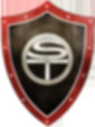 SafetyTek Logo 2.png
