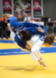 judoFall.png