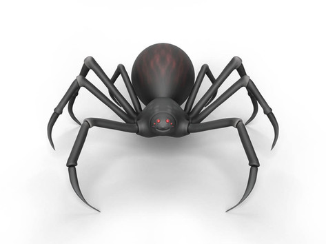 Zbrush Elementary Course Spider Raw.jpg