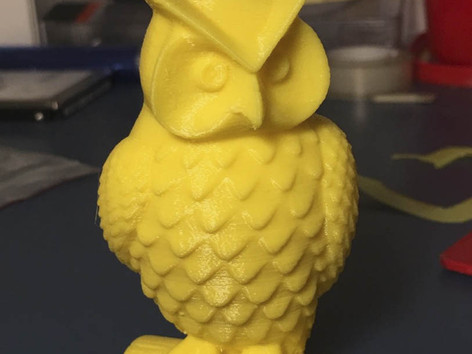 3D scan and print workshop Owl Print.jpg