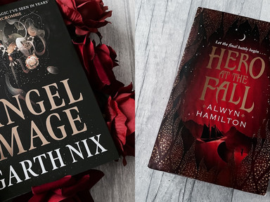 REVIEW: Angel Mage and Hero at the Fall