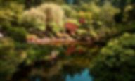 JardinJaponais_3.jpg