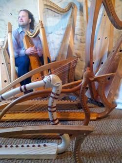 Dimitri harpesWeb2014-03-05 11.51.jpg