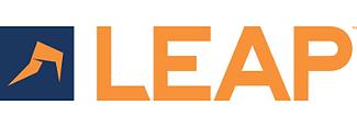 LEAP-Rapid-IT-Solutions.png