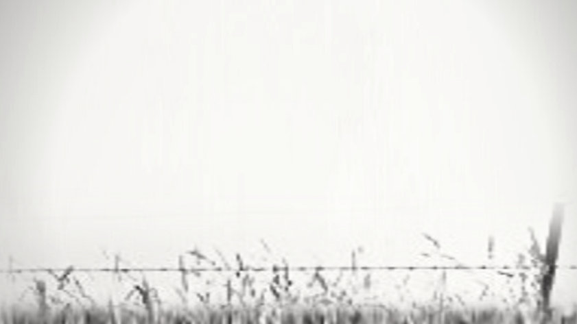 Grey Barbed Wire Background.jpg