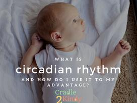 What Is Circadian Rhythm?