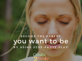 STOP-PAUSE-PLAY