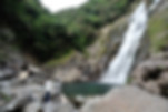 屋久島里めぐり観光ツアー