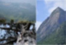 モッチョム岳 (2).jpg