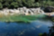 屋久島横河渓谷.jpg