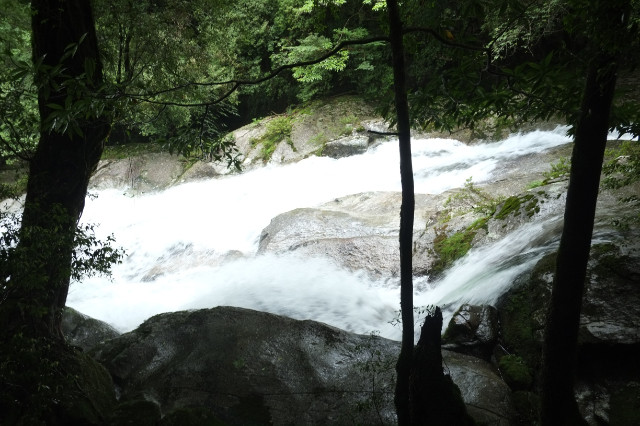 白谷雲水峡の清流