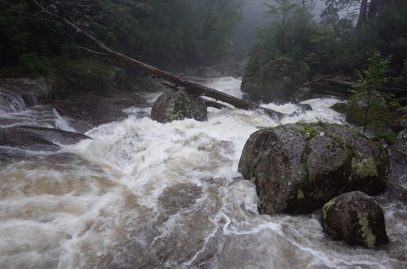 屋久島の川はあっという間に増水します